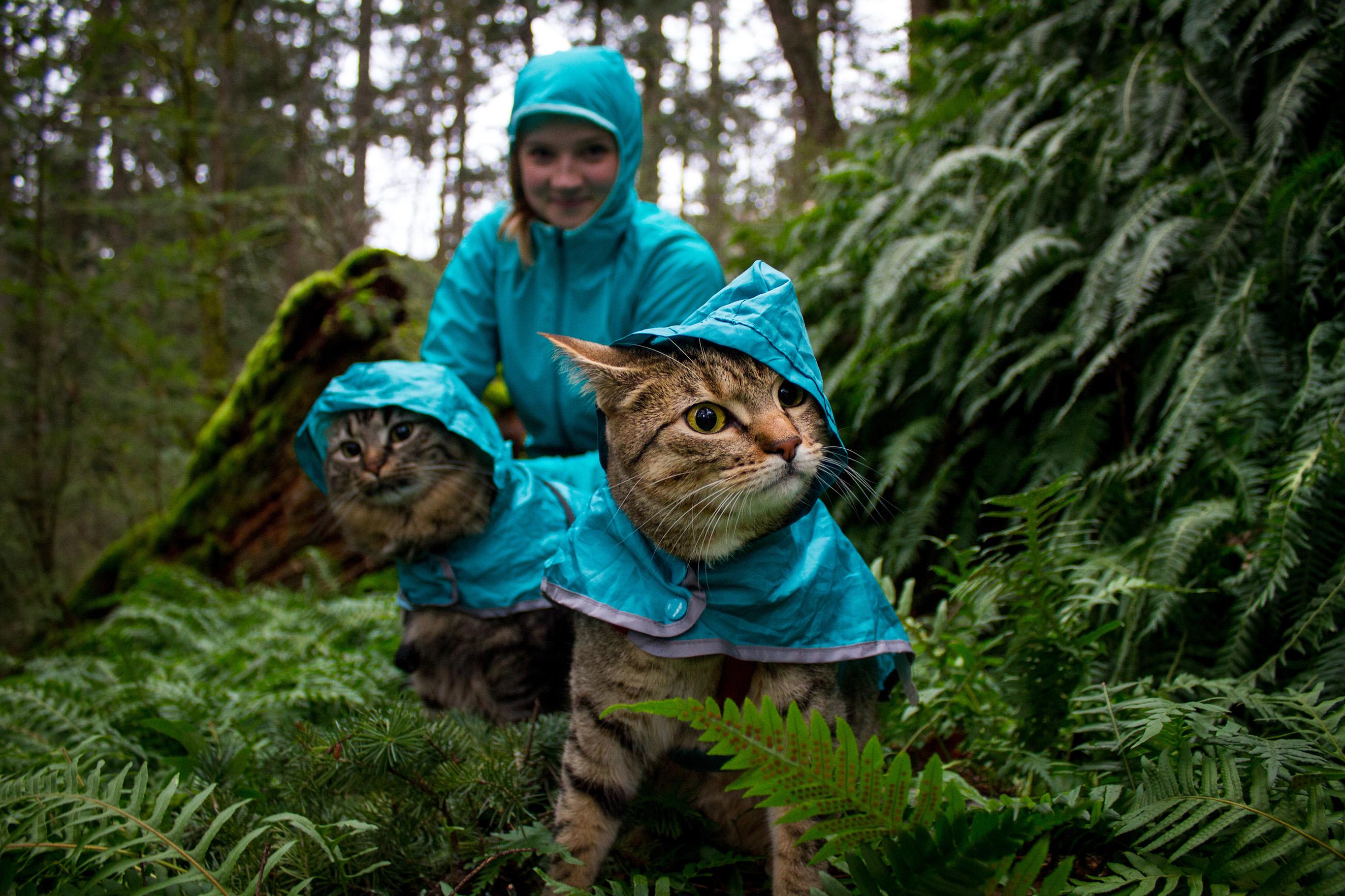 Meet Bolt And Keel Canada S Adventure Cats G Adventures