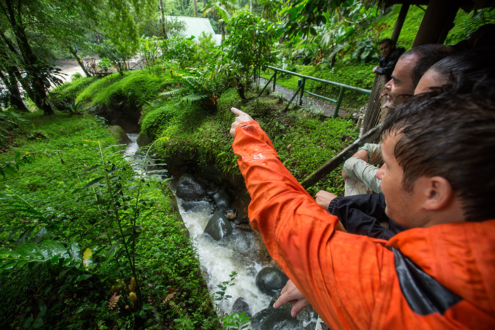 Costa Rica is home to some of the most diverse flora and fauna in the world.