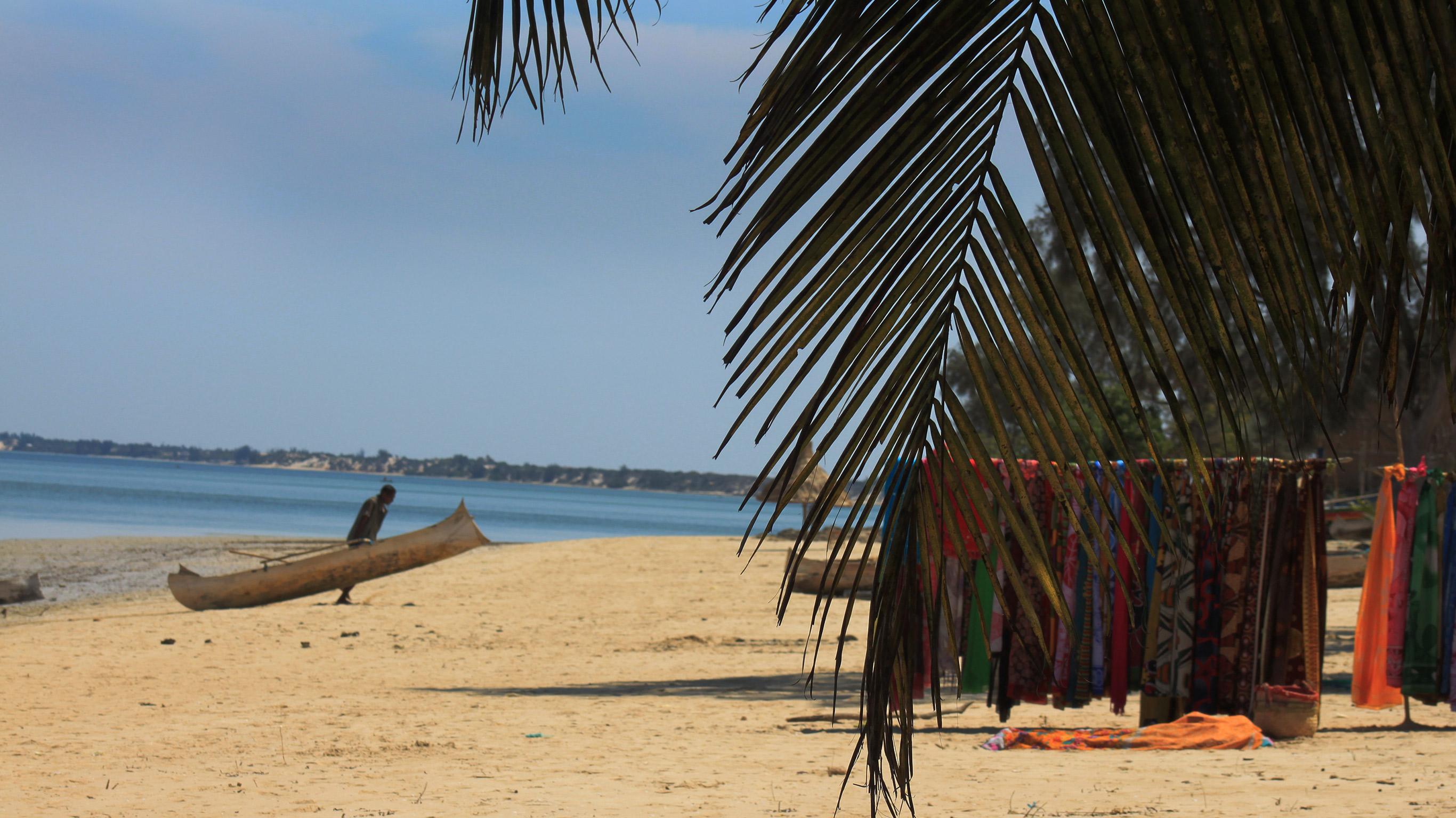 Visual Adventure: Madagascar