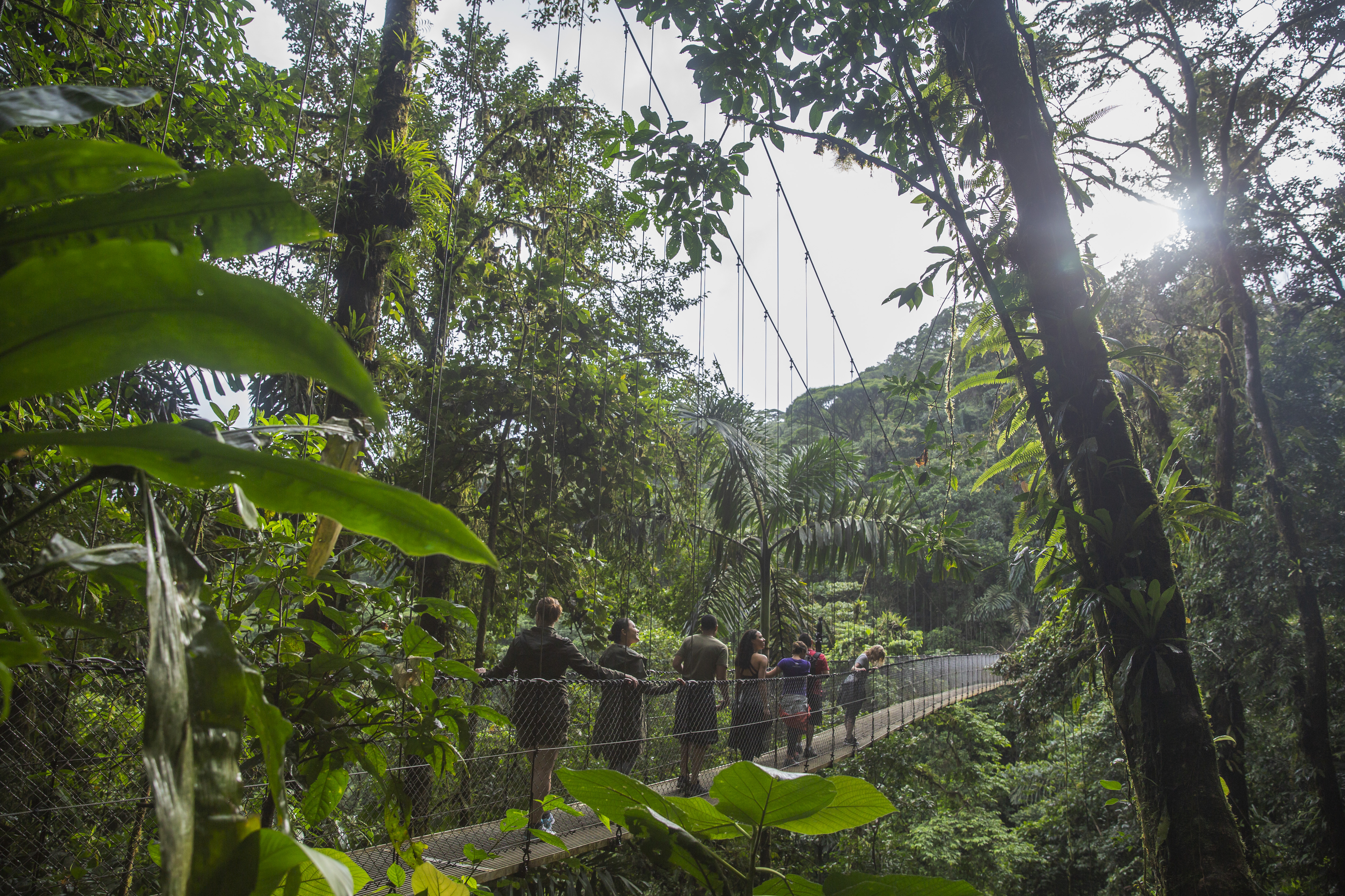 Powerpoint Bridge From Ceo Pack Explore Costa Rica In Central America G Adventures